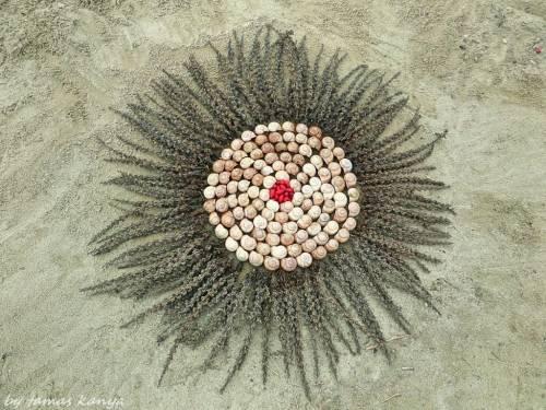 Орнамент из раковин улиток